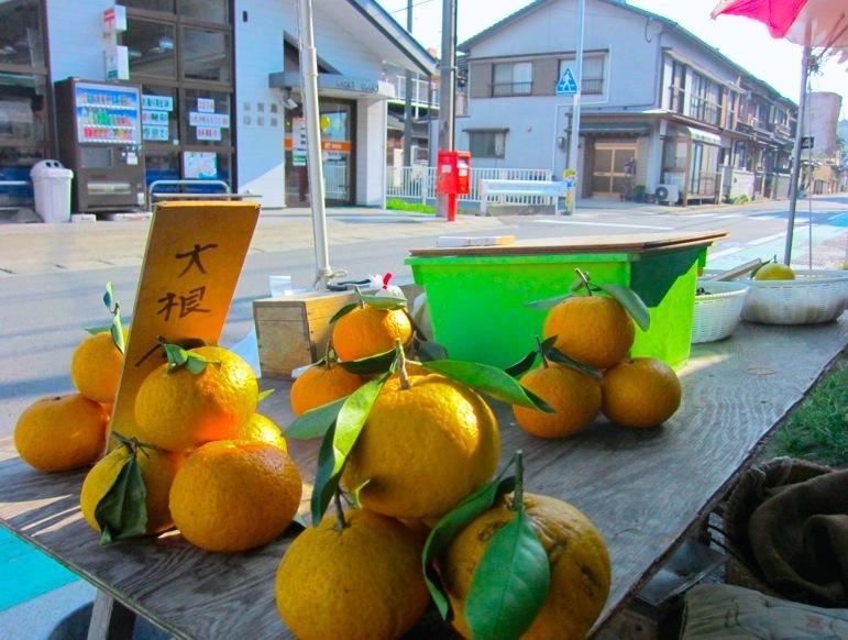 甘夏・ニューサマーオレンジ